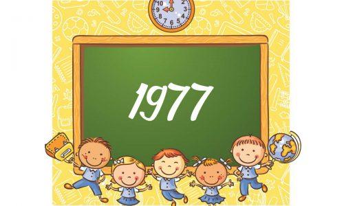 1977-storia-petagna